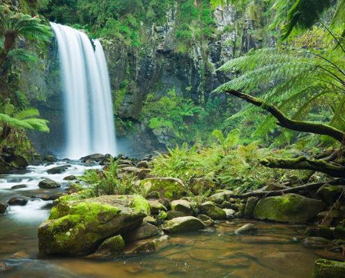 imagem de uma cachoeira e a vegetação natural.