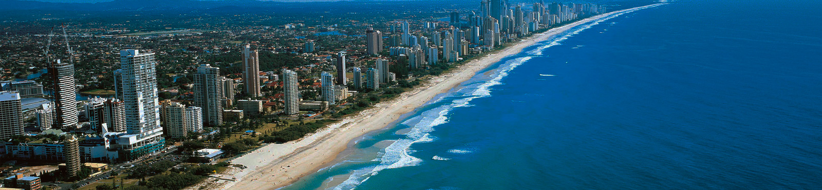 BANNER GOLD COAST CALICULTURAL