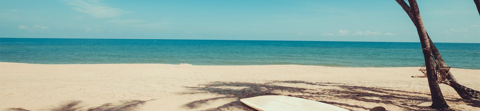 Banner 24 semanas no Hawaii – Calicultural