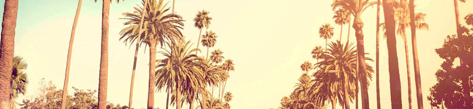 BANNER 24 Semanas em Los Angeles – Calicultural